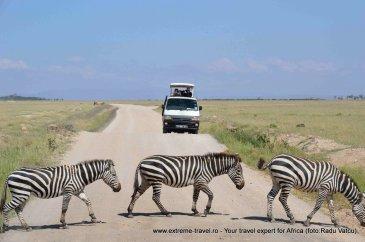 Safari-Xtravel